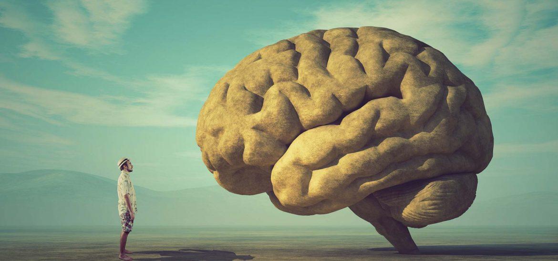 O ideach, które rządzą naszymi umysłami